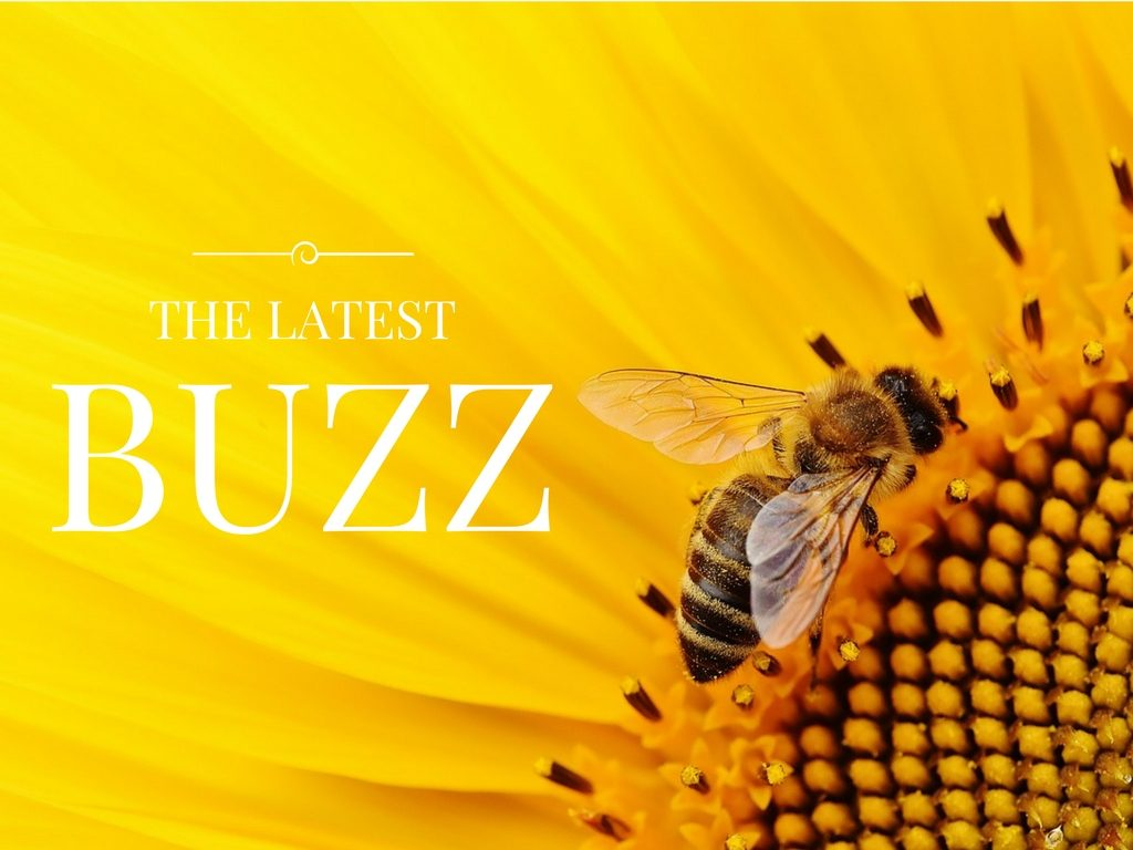 The Latest Buzz