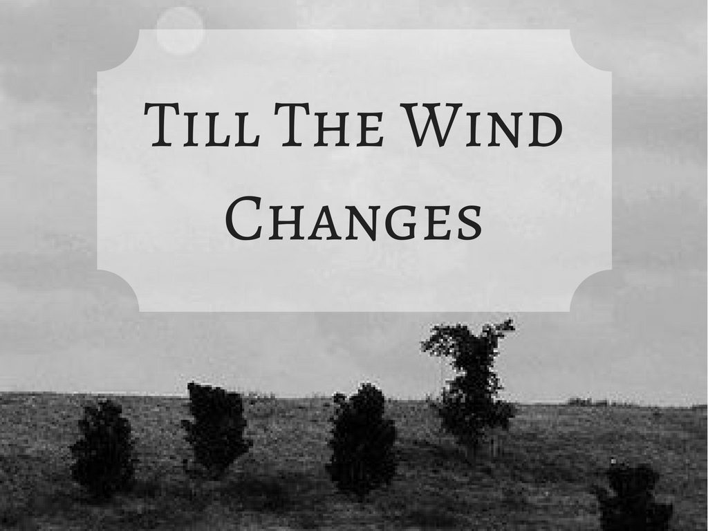 Till The Wind Changes