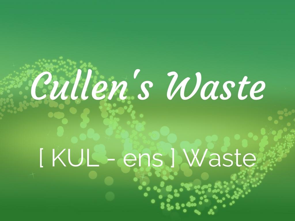 Cullen's Waste