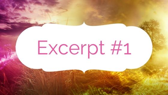 Perception Excerpt #1
